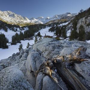High Sierra, Rock Creek, Sierra Nevada, California, Usa by Rainer Mirau
