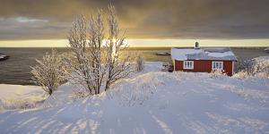 Hut in Reine (Village), Moskenesoya (Island), Lofoten, 'Nordland' (County), Norway by Rainer Mirau