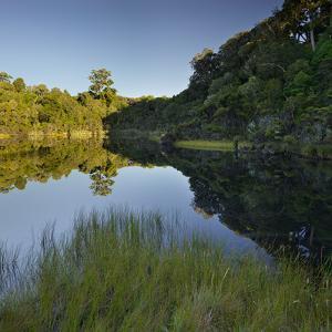 Lake Wilkie, Catlins, Otago, South Island, New Zealand by Rainer Mirau