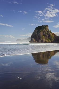 Lion Rock, Piha, Auckland, North Island, New Zealand by Rainer Mirau