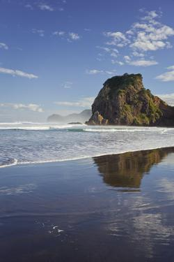 Lion Rock, Piha, Auckland, North Island, New Zealand by Rainer Mirau