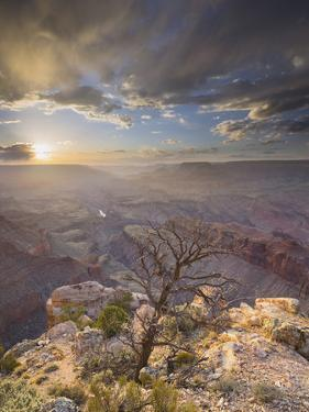 Lipan Point, South Rim, Grand Canyon National Park, Arizona, Usa by Rainer Mirau