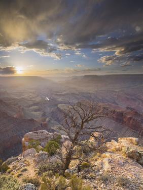 Lipan Point, South Rim, Grand Canyon National Park, Arizona, Usa by Rainer Mirau