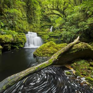 Lower Mclean Falls, Catlins, Southland South Island, New Zealand by Rainer Mirau