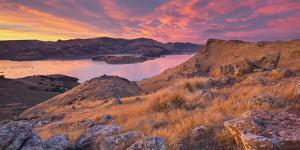 Lyttelton Harbour, Christchurch, Canterbury, South Island, New Zealand by Rainer Mirau