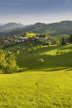 Maria Neustift, Foothills of the Alps, Upper Austria, Austria by Rainer Mirau