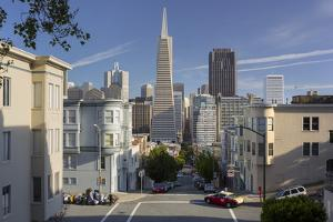 Montgomery Street, Transamerica Pyramid, Telegraph Hill, San Francisco, California, Usa by Rainer Mirau