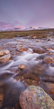 Norway, Nordland, Saltfjellet Svartisen National Park, Semskadalen, River Semska, Bolna by Rainer Mirau