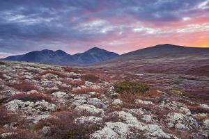 Norway, Rondane National Park, Mountain Landscape, Autumn by Rainer Mirau