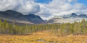 Norway, Rondane National Park, Mountain Landscape by Rainer Mirau