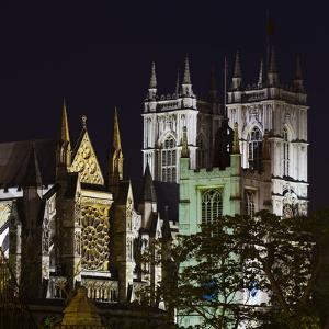 Of Westminster Abbey, Illuminated, at Night, London, England, Great Britain by Rainer Mirau