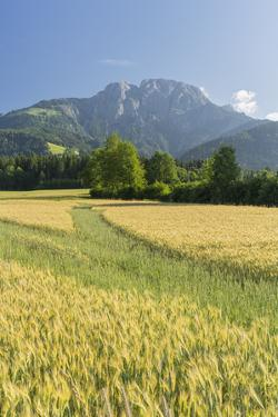 Rei?ofel, Gailtaler Alps, Carinthia, Austria by Rainer Mirau