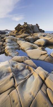 Sandstone, Salt Point State Park, Sonoma Coast, California, Usa by Rainer Mirau