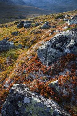 Scandinavia, Norway, Jotunheimen, National-Park, Mountains, Rocks, Nature by Rainer Mirau