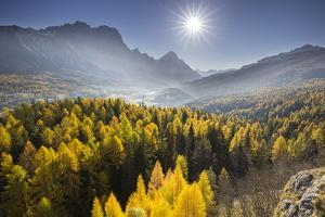 Sorapiss, Larches, Sun, Cortina D'Ampezzo, Veneto, the Dolomites, Italy by Rainer Mirau