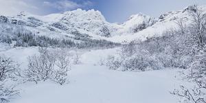 Stjerntinden (Mountain), Flakstadoya (Island), Lofoten, 'Nordland' (County), Norway by Rainer Mirau