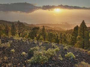 Sundown Las Manchas, Parque Natural Cumbre Vieja, Island La Palma, Canary Islands, Spain by Rainer Mirau