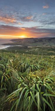 Sunrise in Sandy Mount, Dunedin, Otago, South Island, New Zealand by Rainer Mirau