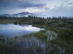 Sunrise in the Nature Reserve Siebenmšser, KitzbŸhel Alps, Moor, Hochkrimml, Gerlosplatte by Rainer Mirau