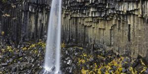 Svartifoss (Waterfall), Skaftafell, East Iceland, Iceland by Rainer Mirau