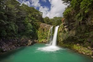 Tawhai Falls, Tongariro National Park, Manawatu-Manganui, North Island, New Zealand by Rainer Mirau