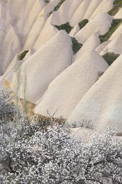 Tuff Stone Erosion with Uchisar, Blossoming Trees, Cappadocia, Anatolia, Turkey by Rainer Mirau