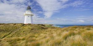 Waipapa Lighthouse, Catlins, Southland, South Island, New Zealand by Rainer Mirau