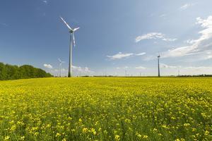 Wind Turbines, Raps, Marchfeld, Austria by Rainer Mirau