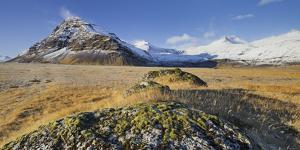 With Moss Covered Stones, Fellsfjall (Mountain), Midfellstidur, Sudursveit, East Iceland, Iceland by Rainer Mirau