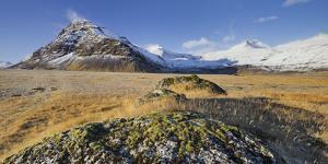 With Moss Covered Stones, Fellsfjall (Mountain), Midfellstidur, Sudursveit, East Iceland, Iceland by Rainer Mirau
