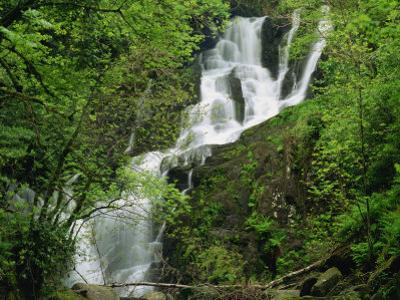 Torc Waterfall at Killarney, County Kerry, Munster, Eire, Europe by Rainford Roy