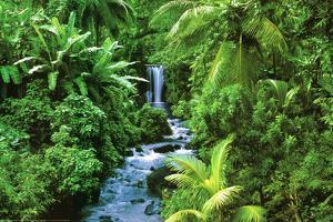 Rainforest (Waterfall) Art Poster Print