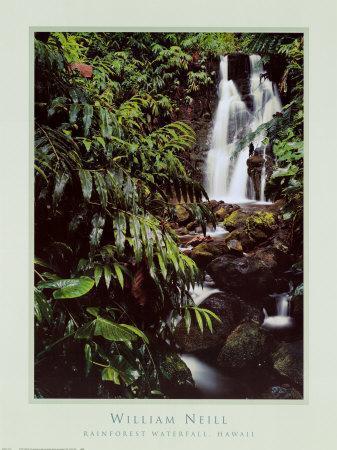 https://imgc.allpostersimages.com/img/posters/rainforest-waterfall-hawaii_u-L-E6XPG0.jpg?artPerspective=n