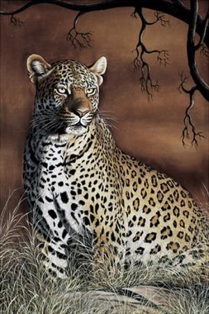 Sitting Leopard