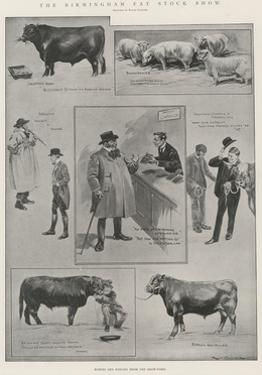 The Birmingham Fat Stock Show by Ralph Cleaver
