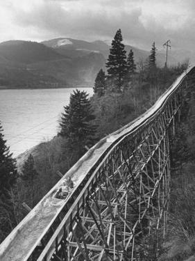Joy-Riders Taking Boat Ride Down Logging Chute by Ralph Crane