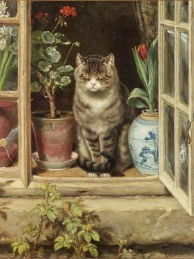 Blinking in the Sun, 1881 by Ralph Hedley