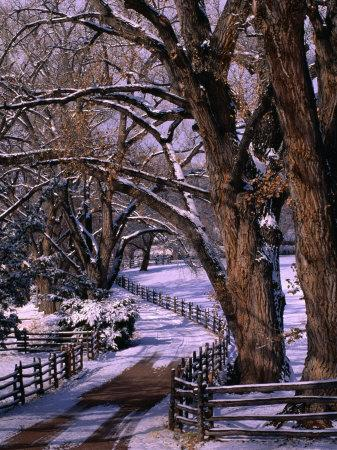 Country Road Leading to Nambe Ranch in Early Winter, New Mexico, USA