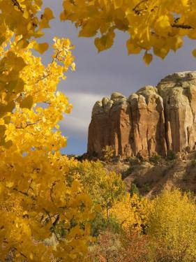 Yellow Leaves of Fall Frame a Rock Formation, Santa Fe, New Mexico, USA by Ralph Lee Hopkins