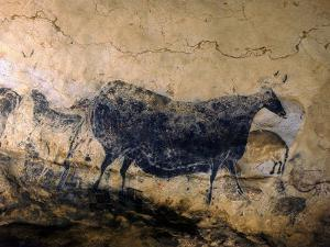 Lascaux Cave Drawing Depicting Steer, Circa 15,000 BC by Ralph Morse