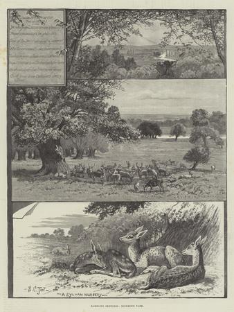 https://imgc.allpostersimages.com/img/posters/rambling-sketches-richmond-park_u-L-PVM5CN0.jpg?p=0