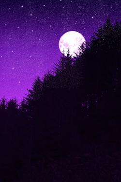 Autumn Moon by Ramona Murdock