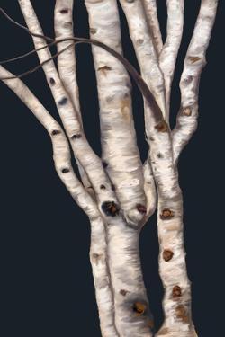 Birch Tree I by Ramona Murdock