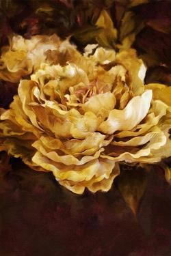 Floral by Ramona Murdock