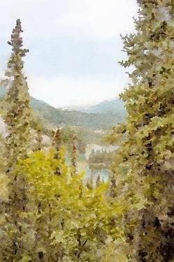 High Country Vista No. 2 by Ramona Murdock