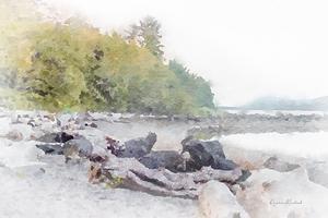 Ketchikan Inlet II by Ramona Murdock