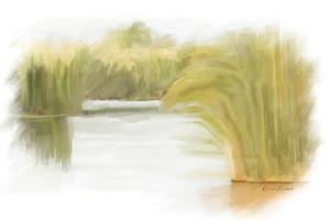 Marshy Wetlands I by Ramona Murdock