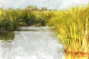 Marshy Wetlands No. 1 by Ramona Murdock