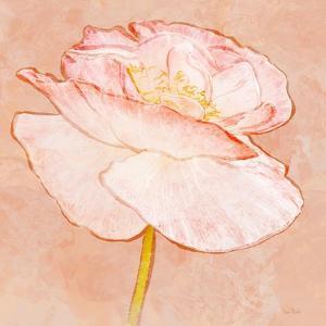 Sweet Peach Poppy I by Ramona Murdock