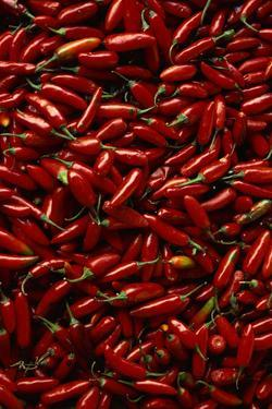 Abundance of Red Chilies by Randy Faris